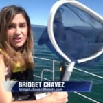 Plastic Pollution Purge: ABC 8 with Michelle Dawn from Sailing Ventures in Lake Tahoe, California