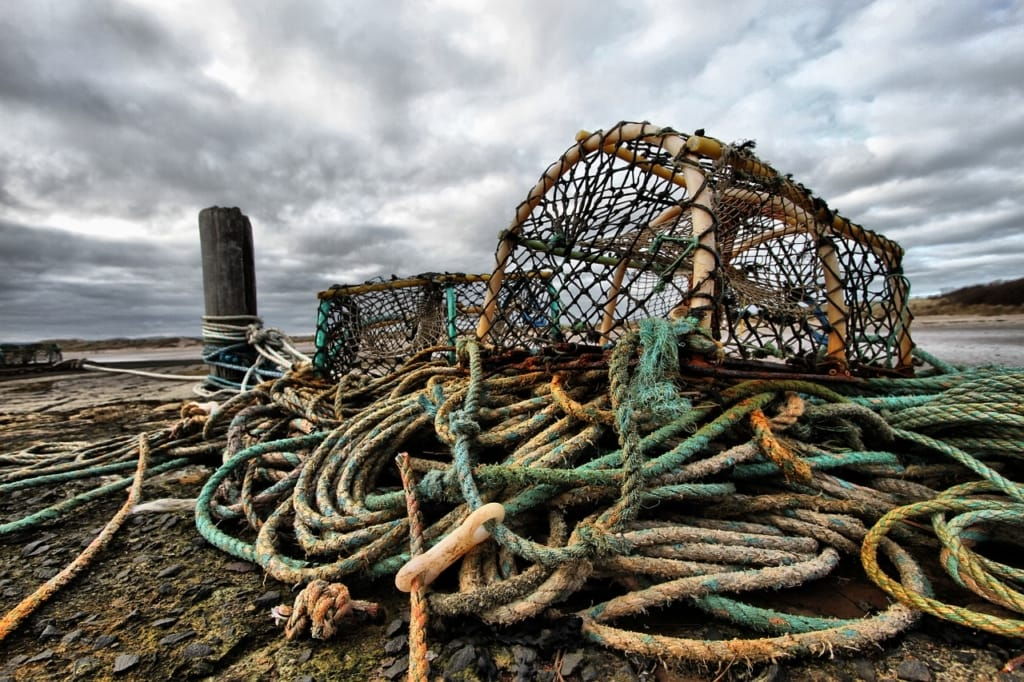 Fishing gear plastic