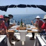 Flotilla-Croatia-Dubrovnik-Sea-Safaris-12