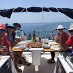 Flotilla-Croatia-Dubrovnik-Sea-Safaris-12