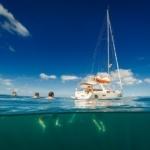 Featured Sailing School: BlueWave-Tashoot Sailing Academy